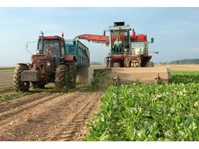France : Agriculture - Tracteur moissoneuse